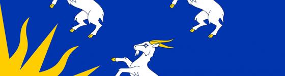 meirionnydd_flag